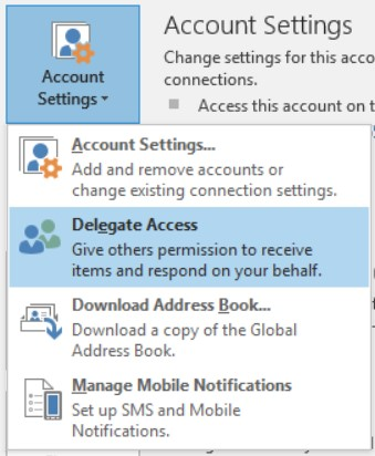 office 2010 delegate access
